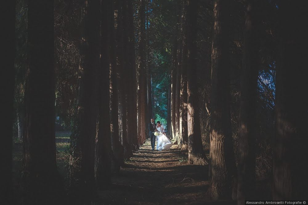 matrimonio-ampi-spazi-nel-verde-bosco-nozze-naturale-botanica